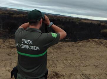 Agente de Medio Ambiente de la Junta de Castilla y León. Foto. @naturalezacyl