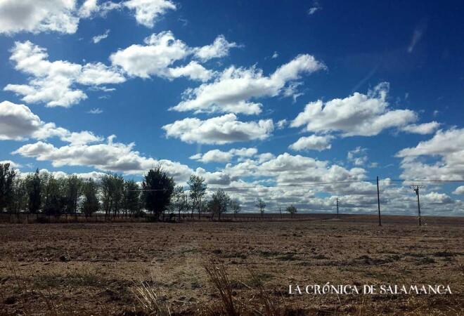 Cielo Salamanca