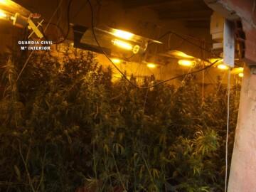 guardia civil marihuana ciudad rodrigo (1)
