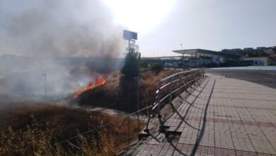 Incendio en las proximidades de la gasolinera de Aldeatejada.
