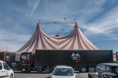 Stellar circus