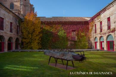Las tonalidades del otoño en uno de los patios del Colegio Fonseca, en Salamanca.