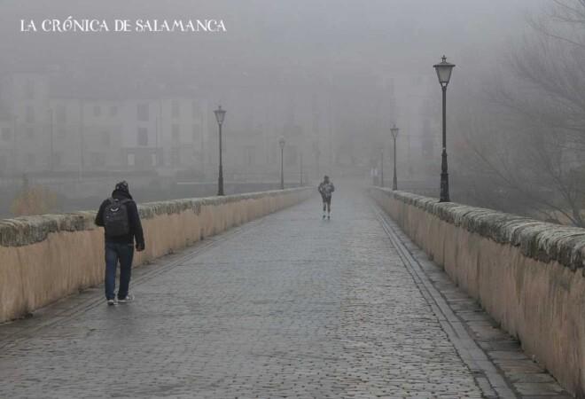 Niebla - Frío