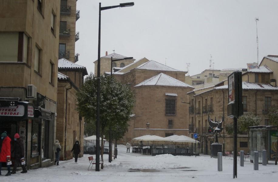 ciudadanos sobre la nieve