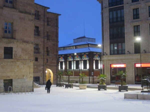 nieve nevada filomena (15