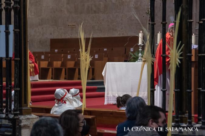 Eucaristía del Domingo de Ramos en la Catedral de Salamanca.