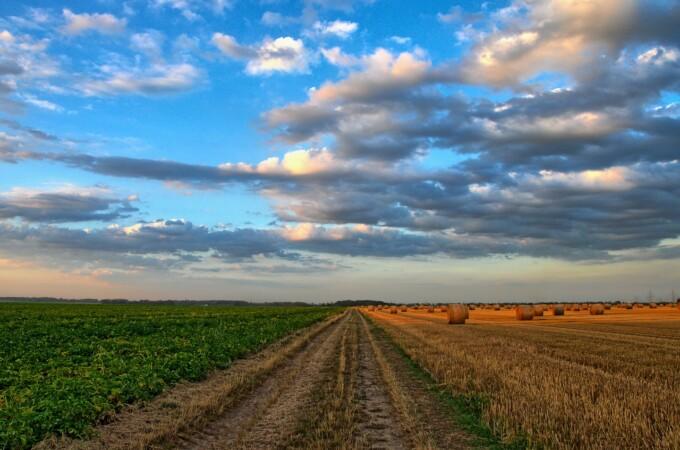 El Ministerio de Agricultura Pesca y Alimentación invertirá 15,3 millones en caminos y desagües del regadío, en Salamanca