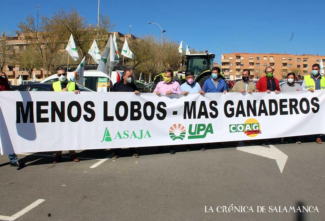 Protesta Lobo