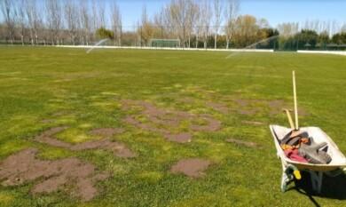 alba campo futbol