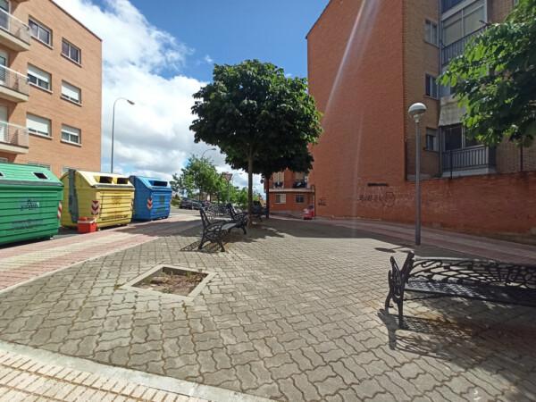 El Ayuntamiento de Salamanca no repone los alcorques vacío en plazas y calles de la ciudad. 2.