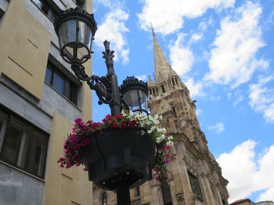 flores farolas calles