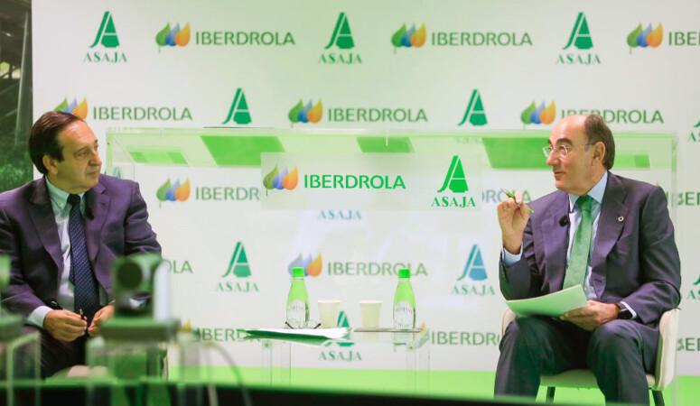 Ibedrola