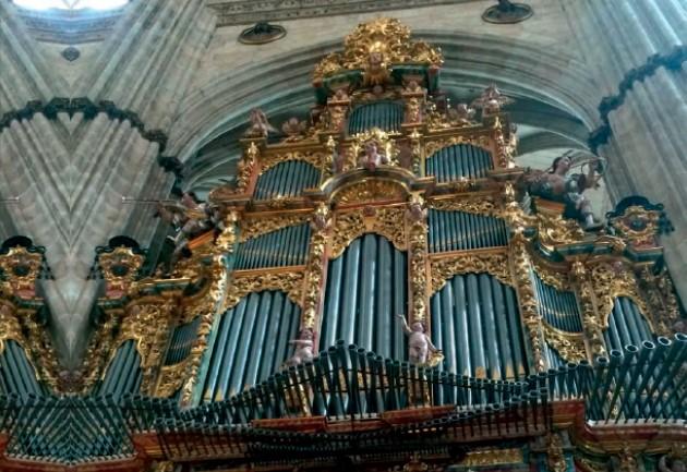 catedral nueva organo