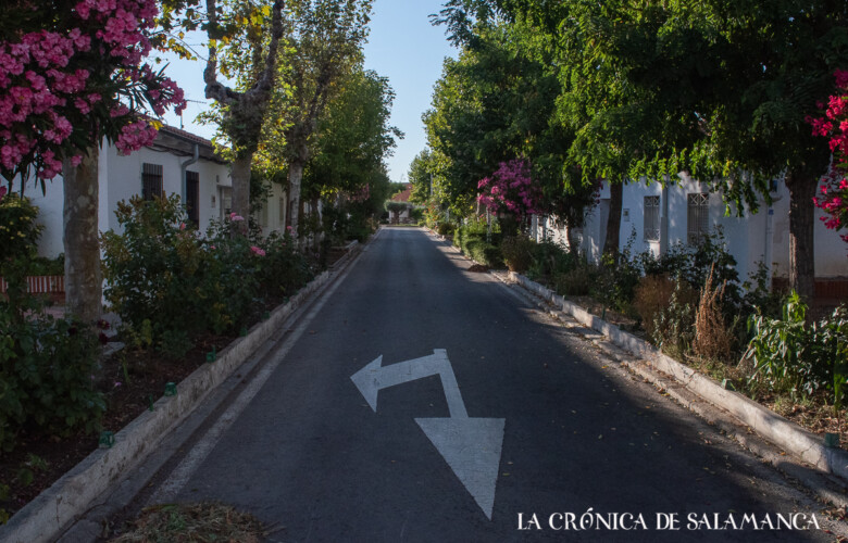 Una de las calles del barrio de La Vega con sus jardines cuidados y florecidos.