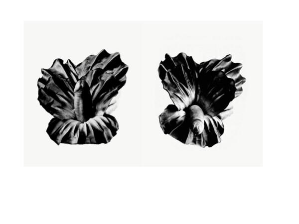 Flores para Juan, del artista Juan Hidalgo, en la galería Adora Calvo.
